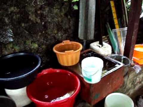 Recogiendo agua bajo la lluvia