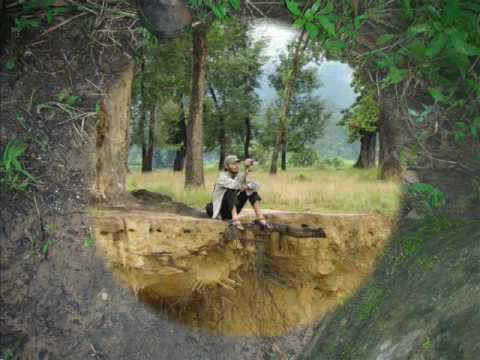 Roots & Shoots, Nepal Picture Slide of Vulture Conservation Project at Nawalparasi, Nepal