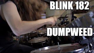 """Blink 182 - """"Dumpweed"""" - DRUMS"""