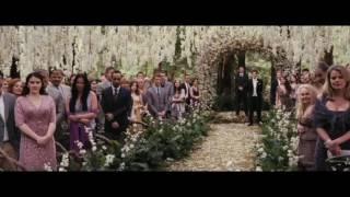 A Proposta - casamento por contrato