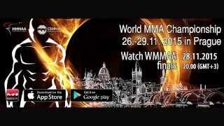 World Championship MMA 2015, WMMAA, 26.11-29.11.15, Czech Republic, Prague