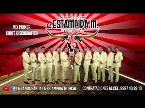 El Negrito de Banda Estampida Musical Letra y Video
