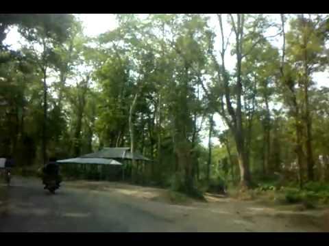 Gazni, Sherpur, Bangladesh
