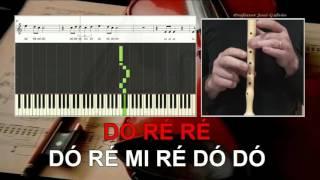 Sia Chandelier Karaoke SEM VOZ GUIA das notas para flauta Educação Musical  José Galvão