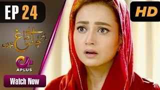 Drama | Is Chand Pe Dagh Nahin - Episode 24 | Aplus ᴴᴰ Dramas | Zarnish Khan, Firdous Jamal width=