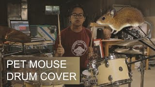 A Great Big Pile of Leaves - Pet Mouse (Drum Cover)