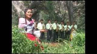 Conquistadores de Ayacucho y La Chinita del Folklore - Ingrata Tortolita
