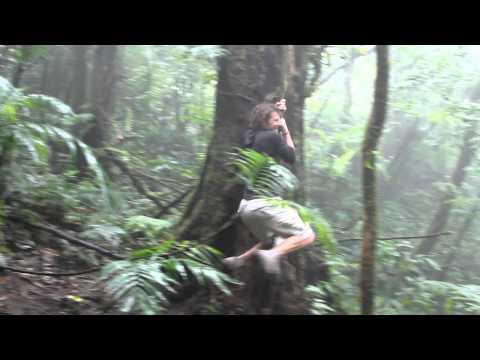 Swinging from vine in Nicaragua