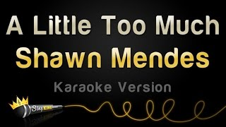 Shawn Mendes - A Little Too Much (Karaoke Version)