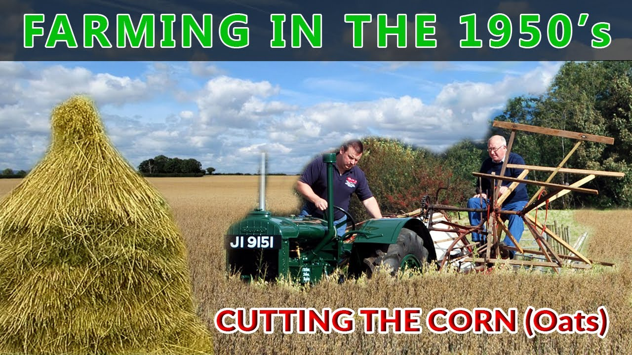 Farming In Ireland in the 1950s - Growing Oats - Farming Down the Years Part One