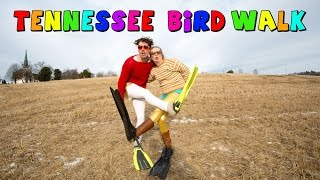 Norwegian Bird Walk - Official Music Video - Eyrock ft. Randi - Cover - PARODY