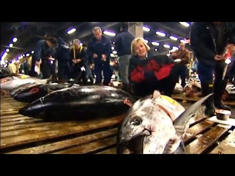 Largest fish market in the world – Blue Planet Deep Trouble – BBC