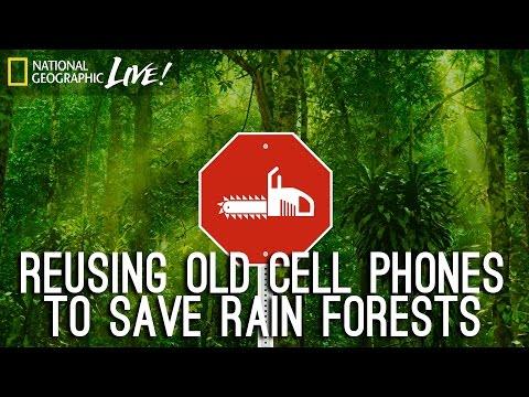 Rainforest Connection (RFCx)