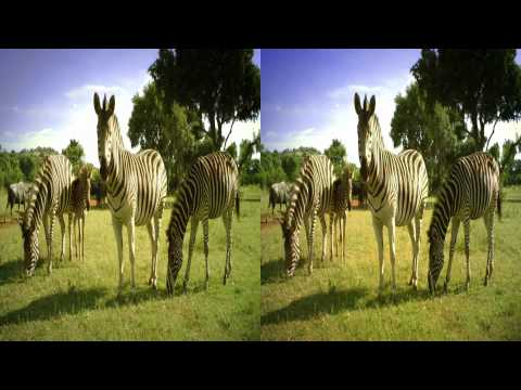 South African Tourism 3D commercial