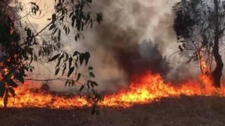 Incendio forestal Potrerillos