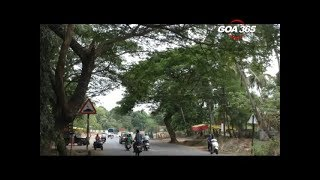 Navelim locals complain over failure to cut tree branches