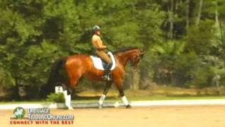 Nancy Later tutorial on how to sit the canter