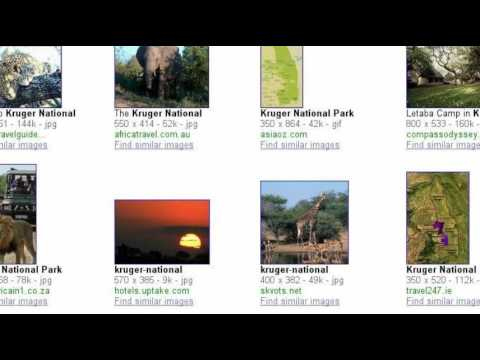 Search Story: GIEU South Africa 2010