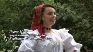 Ileana Maris Sufla vantu frunza-n plop