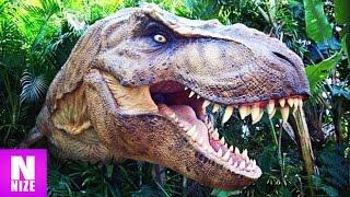 Tyrannosaurus Rex - König Der Dinosaurier!