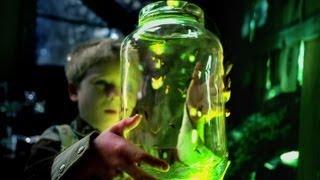 Owl City - Fireflies - (Fireflies Lyrics on Screen)