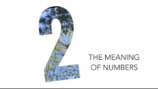 The Meaning of Numbers: 2 / Numerology | Andrea's Number