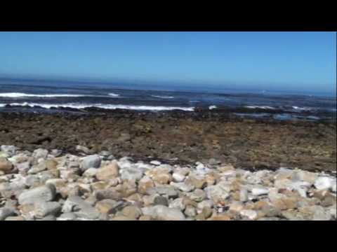 Views Along Cape Peninsula