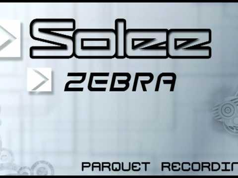 solee-zebra-district80