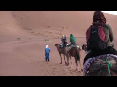 モロッコ サハラ砂漠ツアー ラクダに乗って