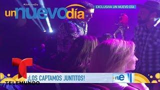 Ninel Conde y Horacio Palencia muy juntitos y enamorados   Un Nuevo Día   Telemundo