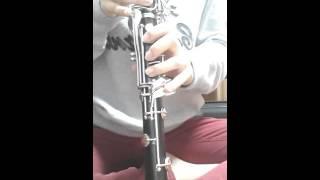 사랑의 배터리 - 홍진영 ( clarinet cover)