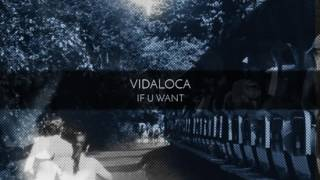 Vidaloca - If U Want (Original Mix)