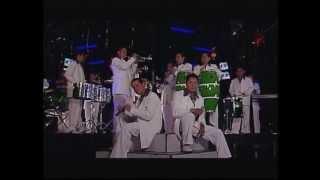 Banda Caña Verde - Bandolera
