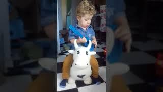 A Vaca Maru