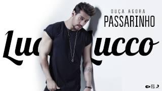 Lucas Lucco - Passarinho (DVD O Destino)