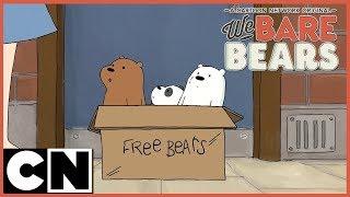 We Bare Bears | Masa Tandas | Cartoon Network (Bahasa Melayu)