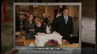 Marshall Eriksen (Cat Sitting - Cat Funeral) - How I Met Your Mother