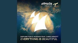 Everything Is Beautiful (Alternative Edit)