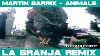 martin garrix-animals parody