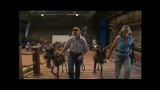 Evan Almighty - Steve Carell - Behind The Scenes Footage