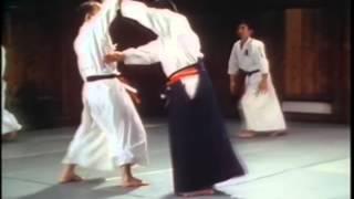 Jigo Tenshin Ryu