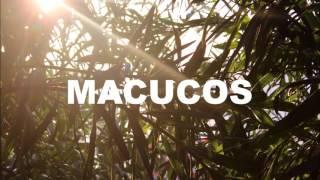 Macucos - Além do Mar