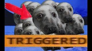 TRIGGERED SEAL MEME !!