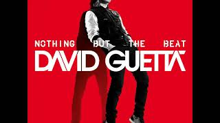 David Guetta ft. Will I Am - Nothing Really Matters + Lyrics