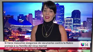 Confirman caso de Rabia en murciélago en Johnson County