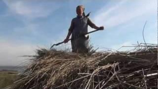 """Dom Rubirosa -  """"A Murtoseira"""". Filmado e montado por Jorge Bacelar"""