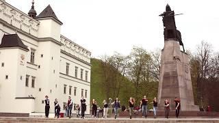 HARLEM 2017: Flashmob Demo video