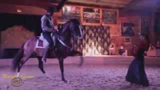 Show Cigano - Dança Cigana - Show gipsy - Dancing Gipsy