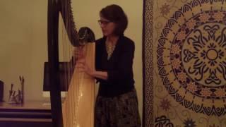 Tiny Desk 2017 'The Crane Returns' solo harp