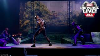 Marvel Universe LIVE! Featuring Black Panther